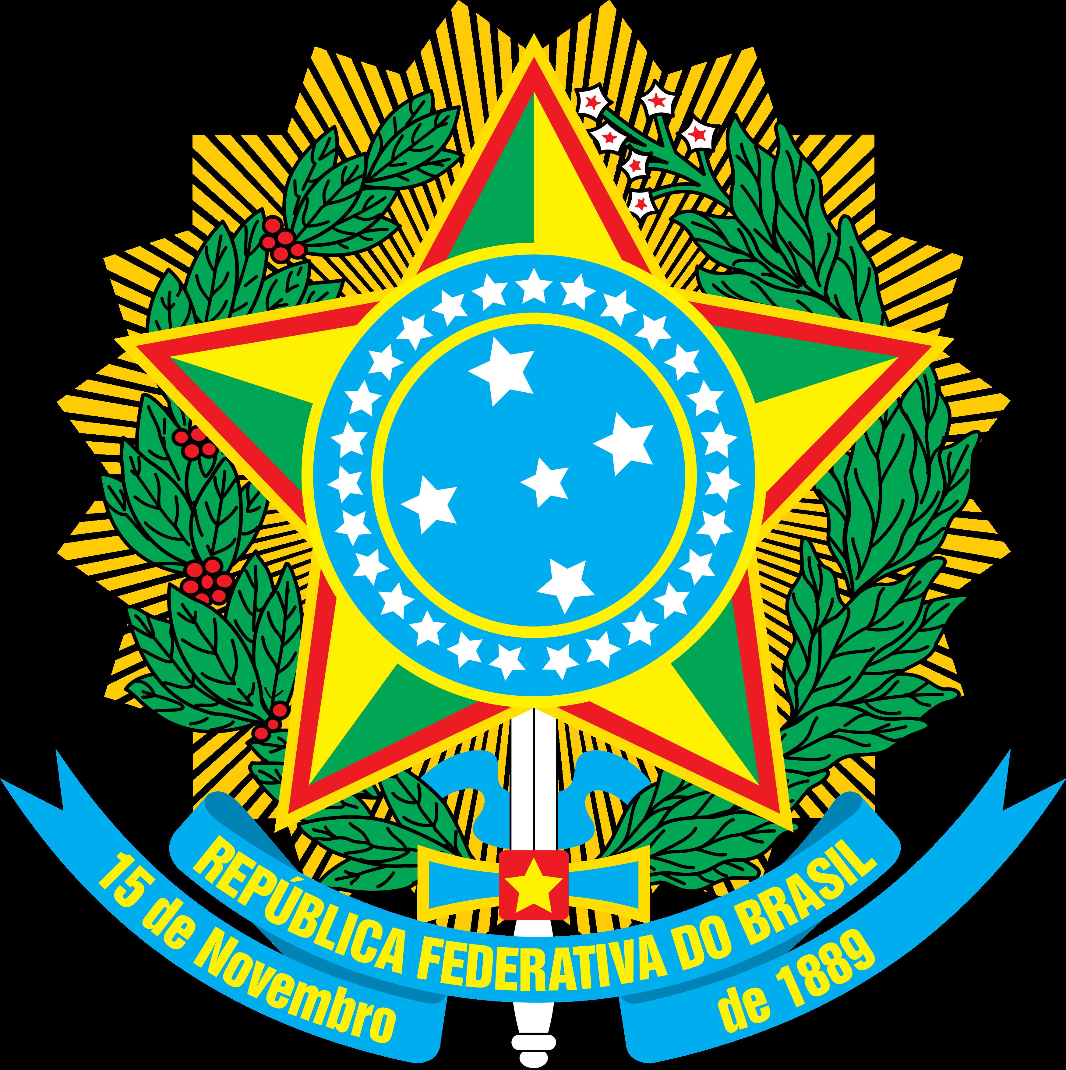 Bras U00e3o Do Brasil Baixar Em PNG No Bras U00e3o Org